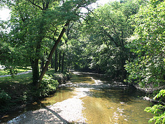 My beloved Rock Creek Park, which I choose to believe CAN be a safe place for women runners.