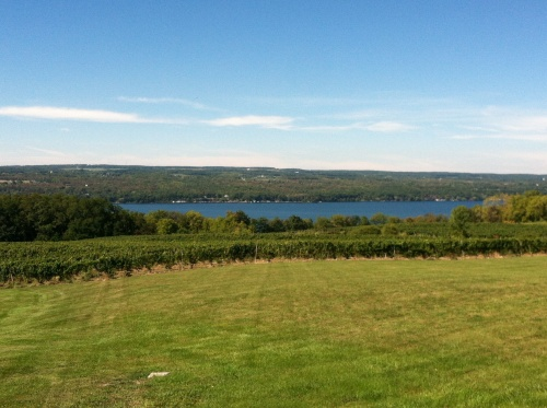 View of Seneca Lake from Standing Stone Vineyards.