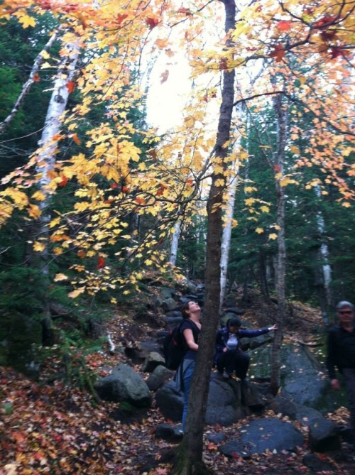 Leaf-peeping on the hike up Cascade Mountain.