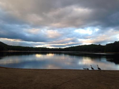Moreau Lake last Thursday evening.
